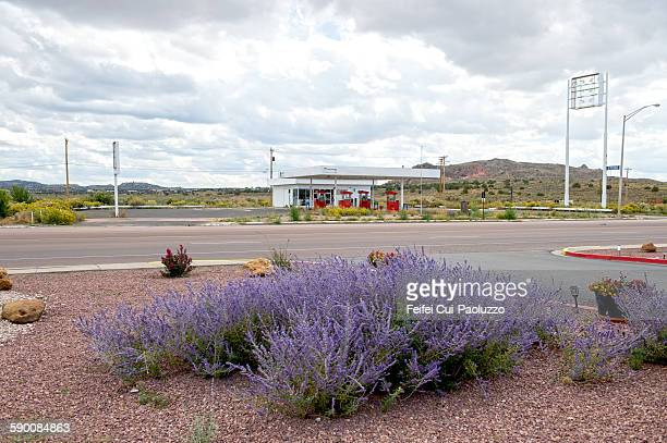 Flowering plants and gas station