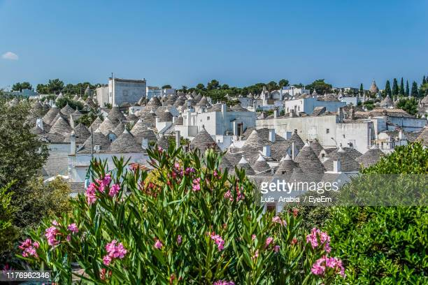 flowering plants by buildings against clear sky - alberobello stock pictures, royalty-free photos & images