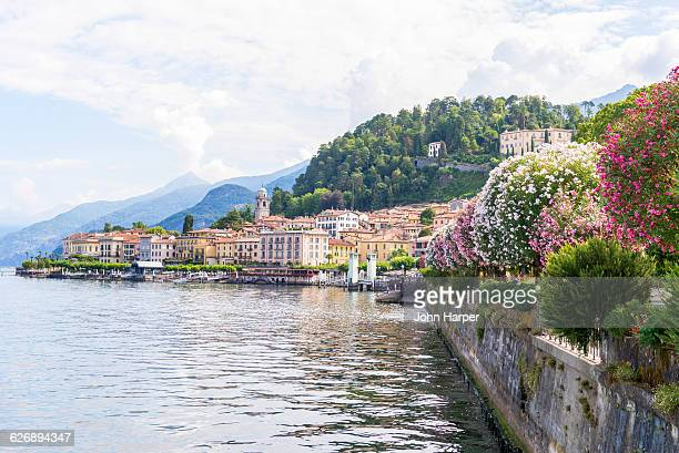 flowering trees by lake como, italy. - chum stock-fotos und bilder