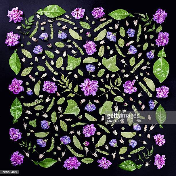 Flower&leaves, seamless pattern, black background