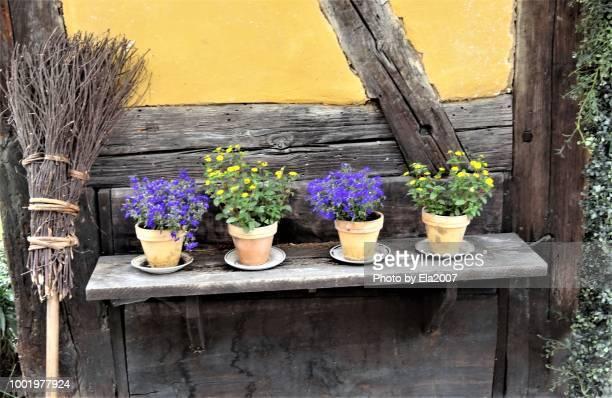 Flowerpots, brooms and Art