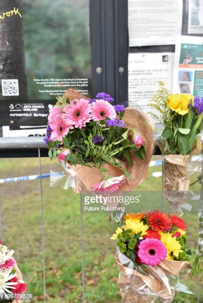 Flowers and cards left in Finsbury Park for murder victim Luliana Tudos on December 30 2017 in London England PHOTOGRAPH BY Matthew Chattle /...