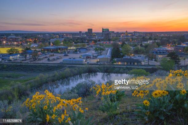 flowers and downtown skyline boise, idaho - boise idaho stock pictures, royalty-free photos & images