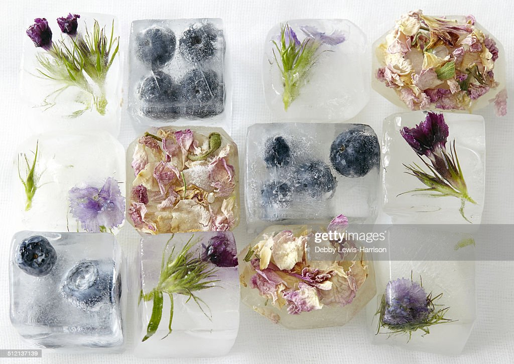 Flowers and fruit frozen in ice-cubes : Stock Photo