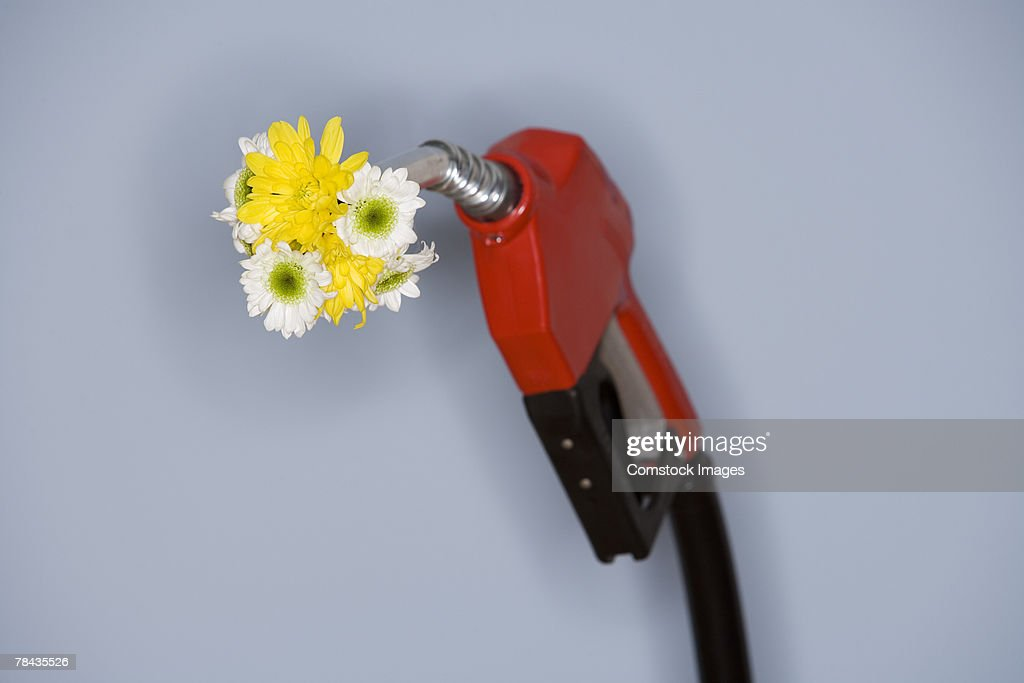 Flowers and gas pump : Stockfoto