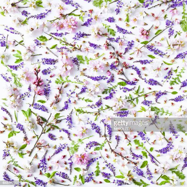 Flowers and leaves, seamless pattern, on white background