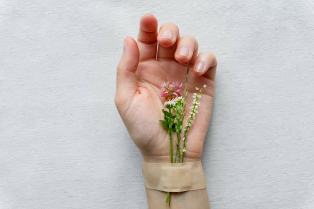 Flowers and medicinal herbs, glued with a medical plaster on the hand of a girl or woman, on a white and light background. The concept of alternative medicine and health care, homeopathy. Alternative treatment and prevention of diseases.