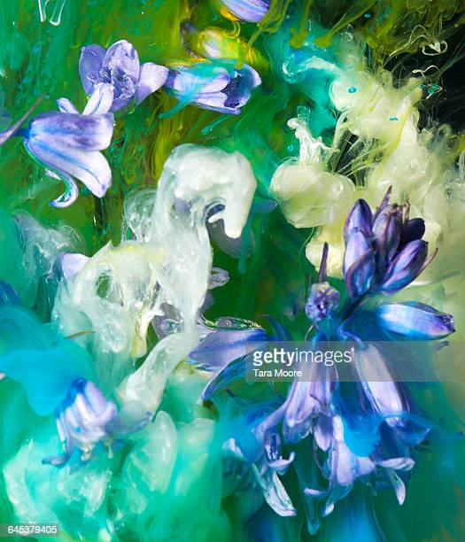 flowers and paint in water
