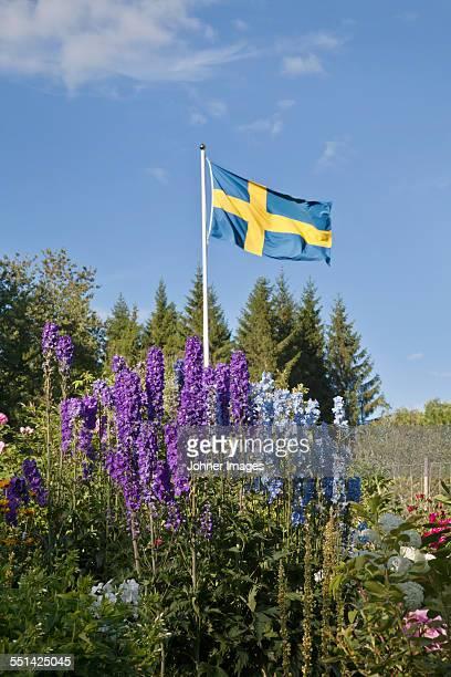 Flowers and Swedish flag