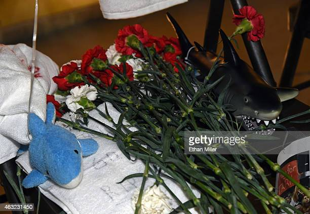 Flowers and toy sharks are among items left at a statue of Jerry Tarkanian outside the Thomas Mack Center at UNLV after a gathering of fans for the...