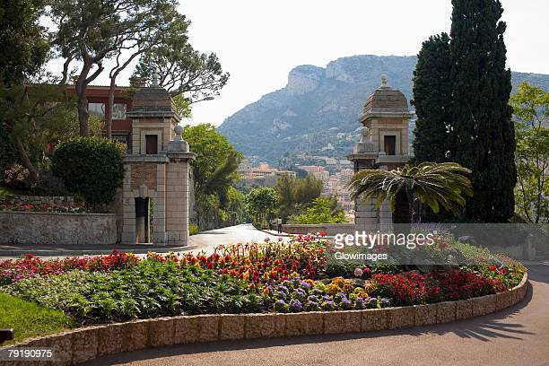 flowers and trees in a garden, monte carlo, monaco - monte carlo stock pictures, royalty-free photos & images