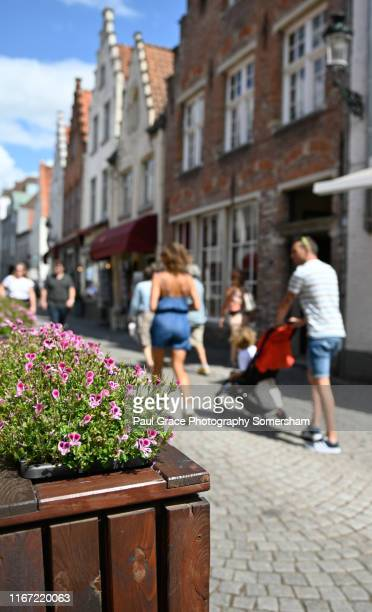 flowers are everywhere in brugge - 西フランダース ストックフォトと画像