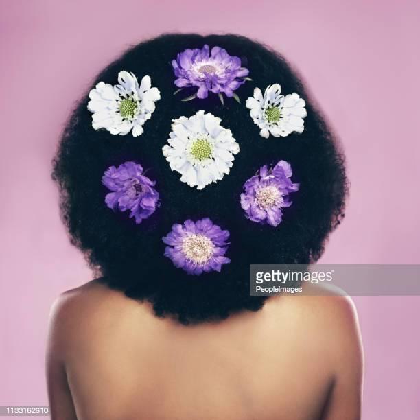 as flores estão por toda parte! - melanina - fotografias e filmes do acervo