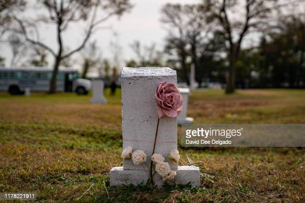 Flowers are laid at a burial marker on Hart Island a former prison and Nike missile silo site which is now the largest public burial ground in the...