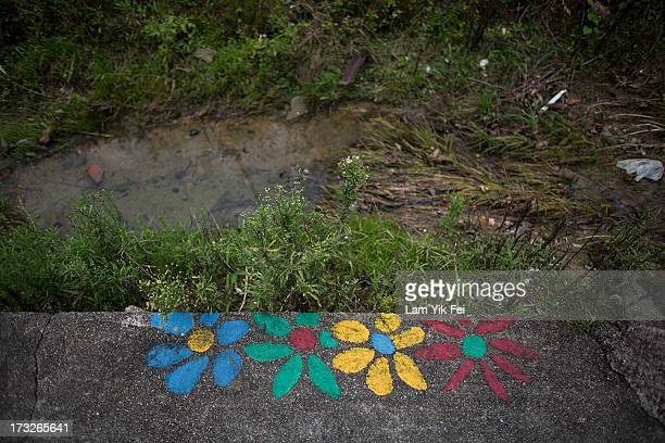 Flowers are painted on the road in Ma Shi Po Village on July 11 2013 in Hong Kong China The North East New Territories New Development Areas project...
