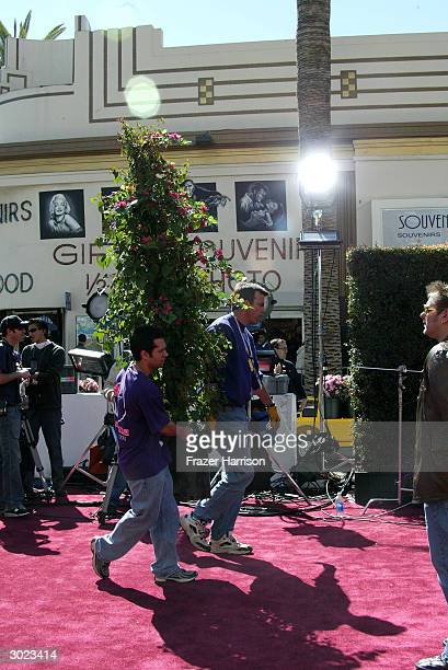 Flowers are placed on the red carpet the day before the Academy Awards at Hollywood and Highland on February 28 2004 in Hollywood California