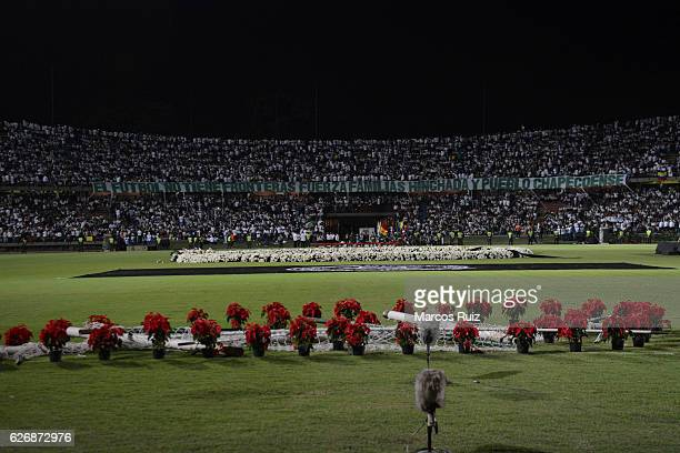 Flowers are seen in the middle of the field during a tribute to brazilian soccer team Chapecoense following fatal airplane crash at Atanasio Girardot...