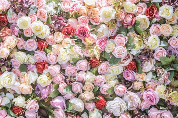 Flowers Backgrouds - Fine Art prints