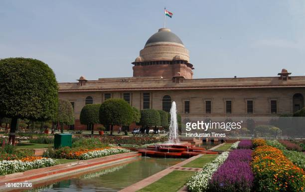 Flowers bloom in the Mughal Garden at Rashtrapati Bhawan on February 13 2013 in New Delhi India The 15 acre area of the Mughal Gardens of Rashtrapati...