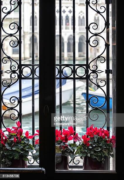flowers by the window,venice,italy - emreturanphoto - fotografias e filmes do acervo