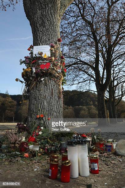 Flowers candles and messages left by mourners adorn a tree near the spot where Maria L a 19yearold medical student was raped and murdered on December...