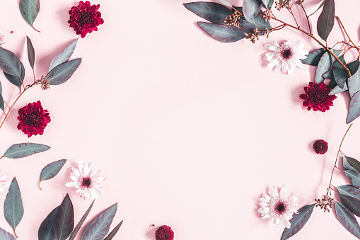 Flowers composition. Eucalyptus leaves and pink flowers on pastel pink background. Mothers day, womens day concept. Flat lay, top view, copy space 1131195838