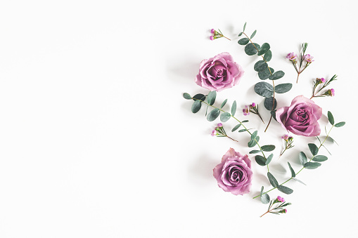 Flowers composition. Pattern made of eucalyptus branches and rose flowers on white background. Flat lay, top view, copy space 1133780043