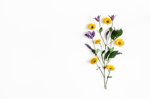 Flowers composition. Yellow and purple flowers on white background. Spring, easter concept. Flat lay, top view, copy space 1127776025