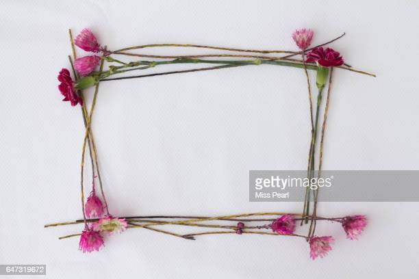 Flowers create a blank canvas frame