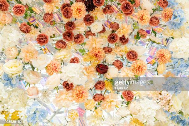 flowers decoration - liyao xie stock pictures, royalty-free photos & images