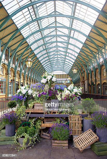 flowers display in covent garden market - covent garden stock pictures, royalty-free photos & images