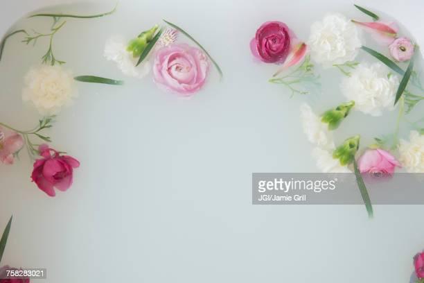 Flowers floating in milk bath
