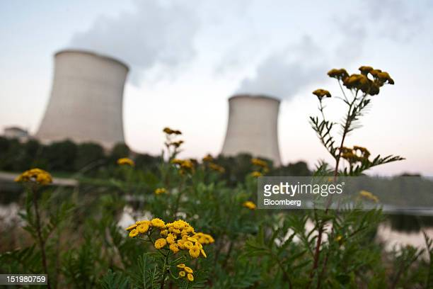 Flowers grow near the SaintLaurentdesEaux nuclear power plant operated by Electricite de France SA in SaintLaurentdesEaux France on Thursday Sept 13...