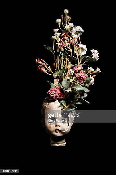 Flowers growing from a broken baby doll head