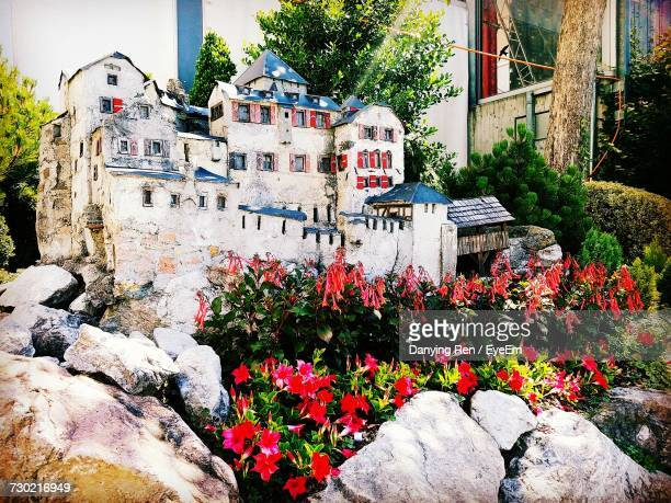 flowers growing in city - vaduz stock pictures, royalty-free photos & images