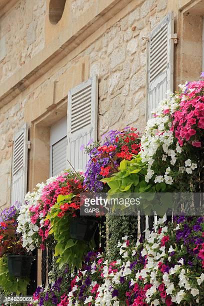 Blumen auf einen französischen Balkon im Dordogne