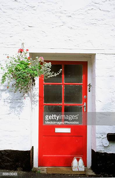 Flowers hanging on the wall of a house with a red door, Totnes, England