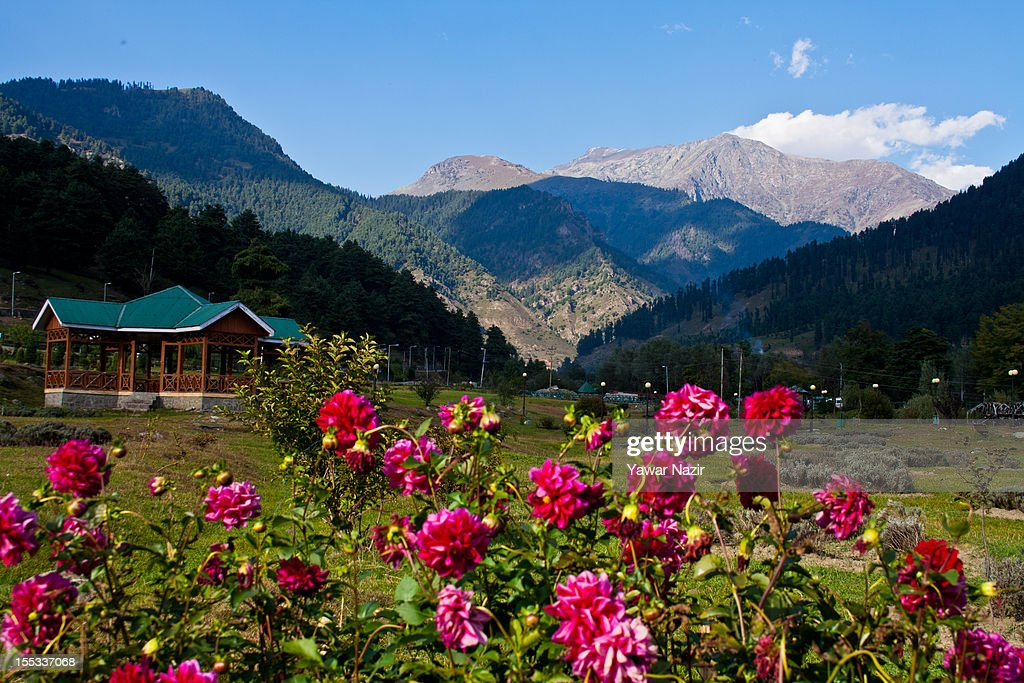 Flowers, hills and green grasses flourish in the Pahalgam garden on November 3, 2012 in Pahalgam, south of Srinagar, the summer capital of Indian administered Kashmir, India. Pahalgam, the Village of Shepherds, is a popular tourist destination where every year large numbers tourists visit from India and abroad. Tourists enjoy long hikes throughout the areas of Lidderwat, Kolohoi Glacier, Sonmarg and various other mountains around Pahalgam.