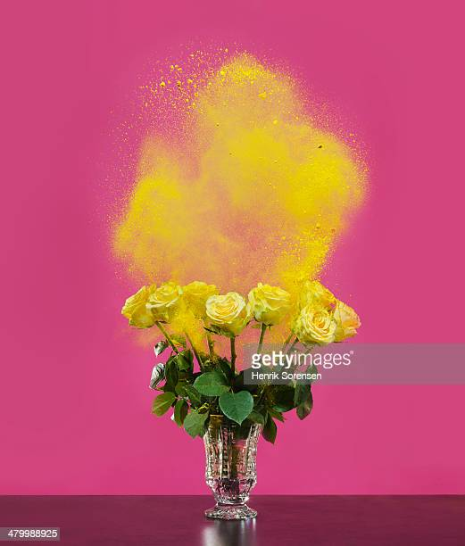 Flowers in a vase, sprayed with colored powder