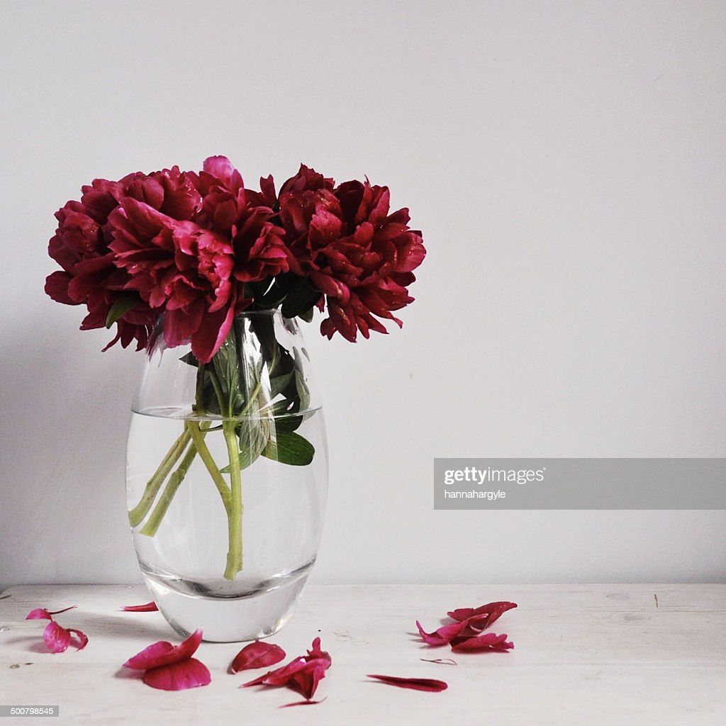Flowers in a vase with petals dropping off stock photo getty images flowers in a vase with petals dropping off stock photo reviewsmspy