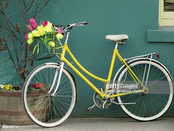 Flowers In Basket Of Yellow Bicycle Leaning On Wall