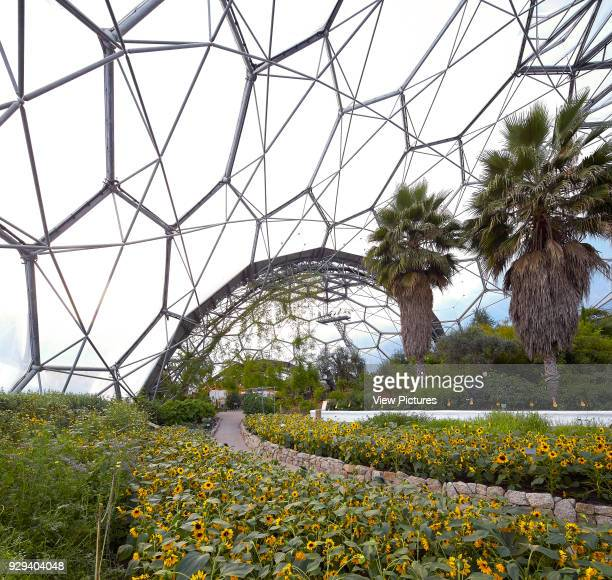 Flowers in bloom within dome Eden Project Bodelva United Kingdom Architect Grimshaw 2016