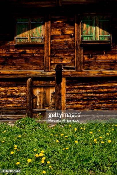Log Cabin Front Doors Photos Et Images