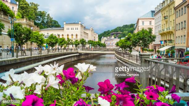 flowers in front of tepla river, karlovy vary, czech republic - karlovy vary stock pictures, royalty-free photos & images