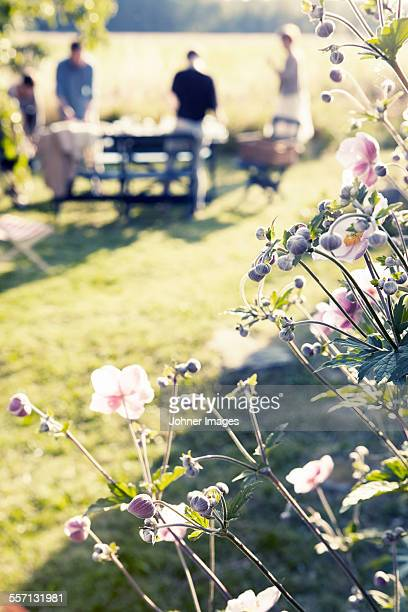 Flowers in garden, people on background