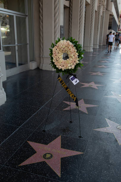 CA: Flowers Placed In Remembrance On The Hollywood Walk Of Fame Star Of Peter Fonda