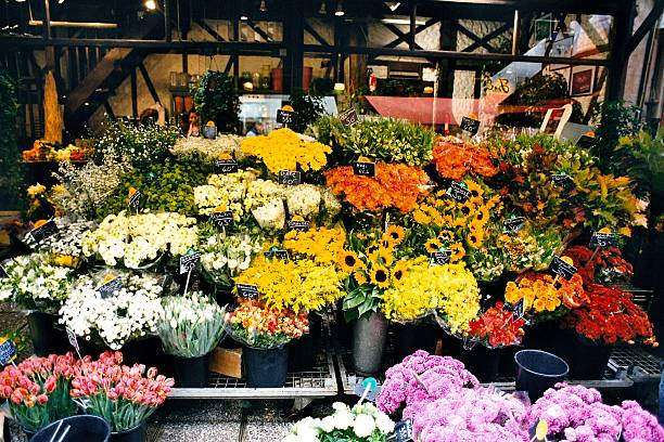 pricing strategy of flower shop Another way is opening a flower shop and advertising strategy also products and pricing in florist business.