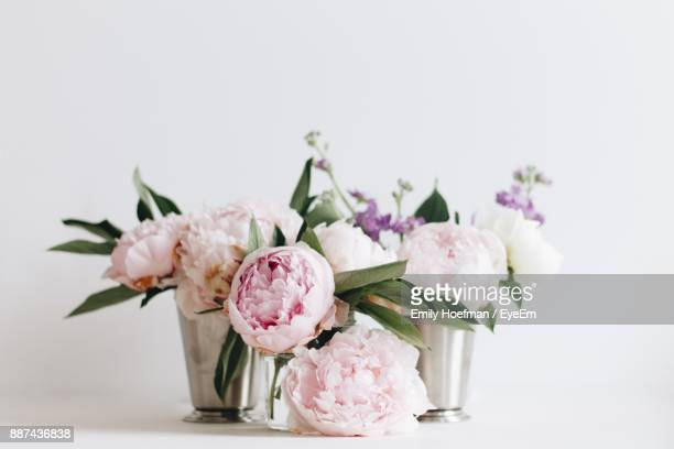 flowers in vase on table against white background - peonia foto e immagini stock