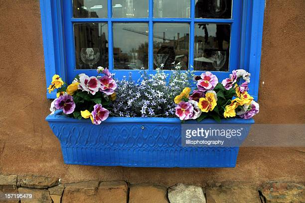 Flowers in Window Box Santa Fe  New Mexico