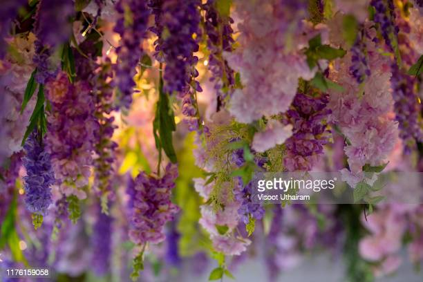 flowers is hanging on the ceiling. - wedding background stock pictures, royalty-free photos & images